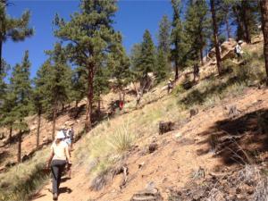 Gill Trail