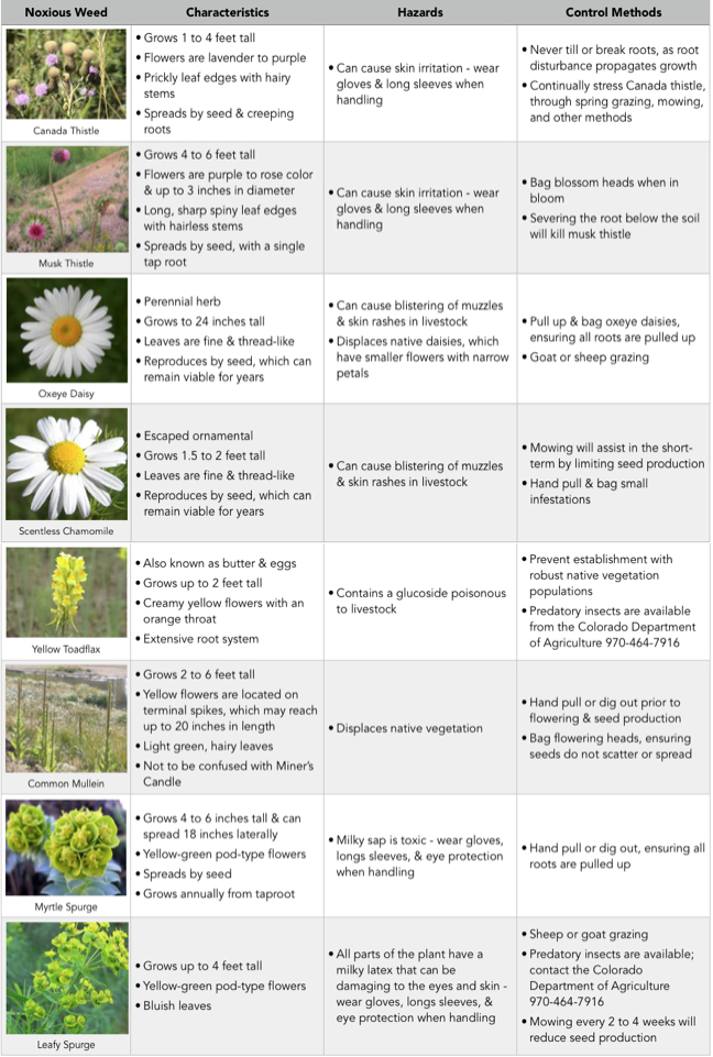 Noxious weeds table1