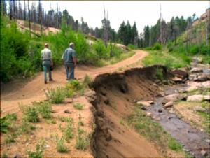 Stream road erosion before