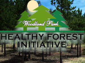 Woodland Park Healthy Forest Initiative