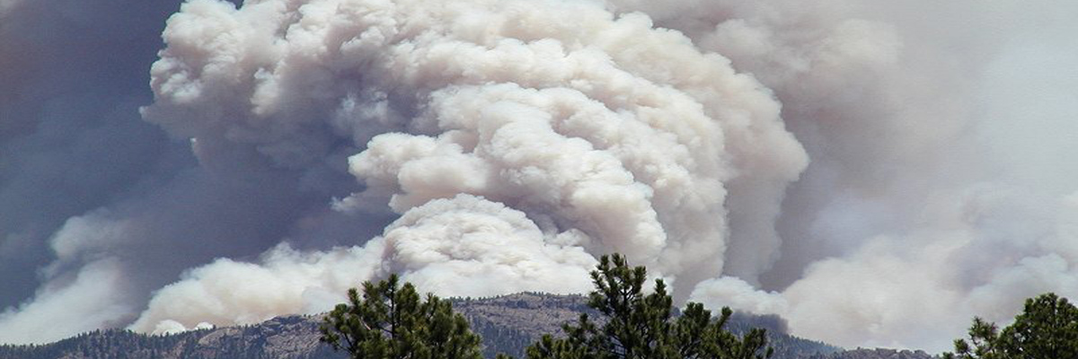 Hayman Fire Coalition For The Upper South Platte