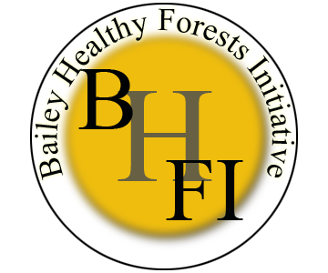 Bailey Healthy Forests