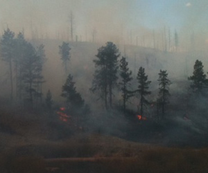 Wildfire Suppresion