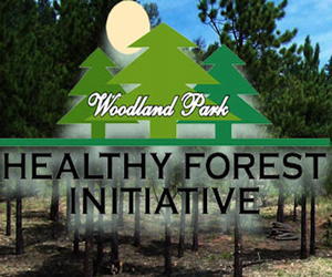 Woodland Park Healthy Forests