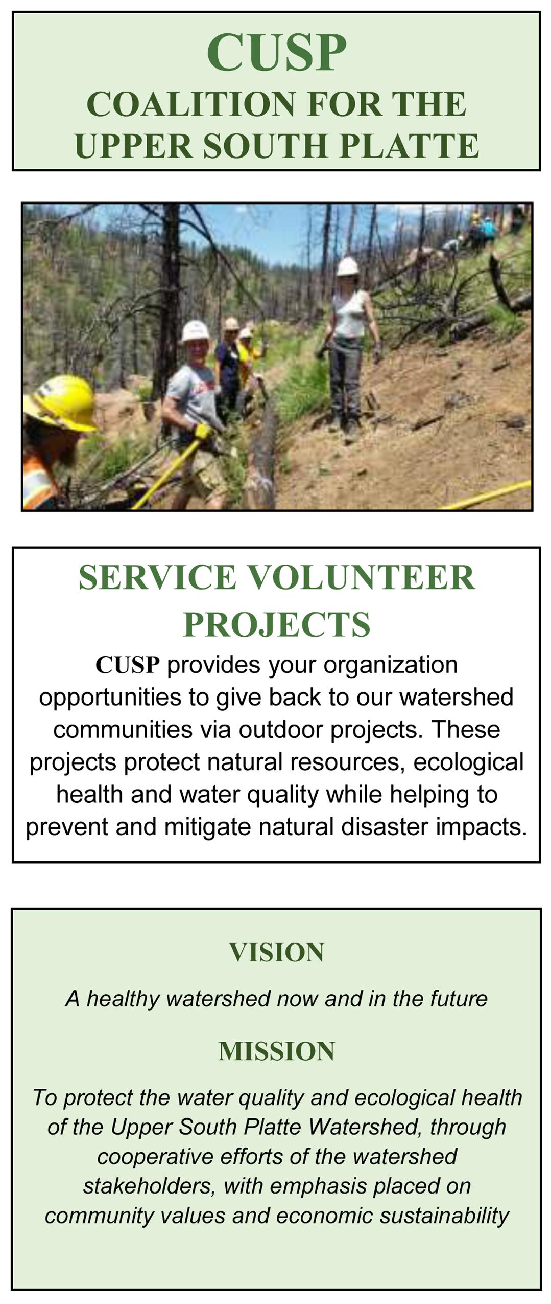 Service Volunteer