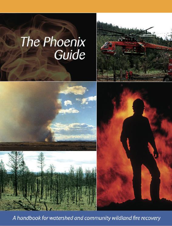 Phoenix Guide
