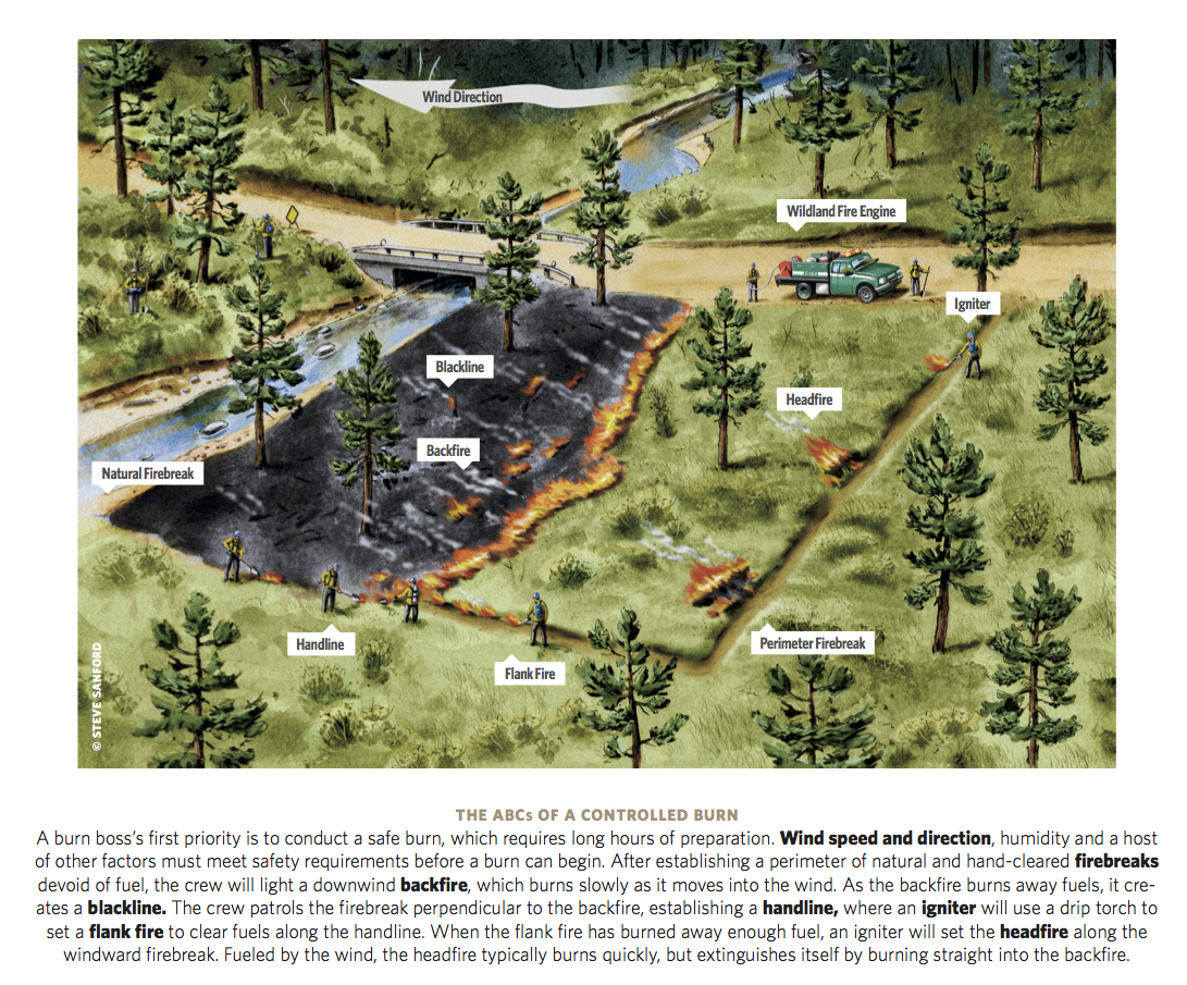 TNC_prescribed_fire_diagram_fall_08-2