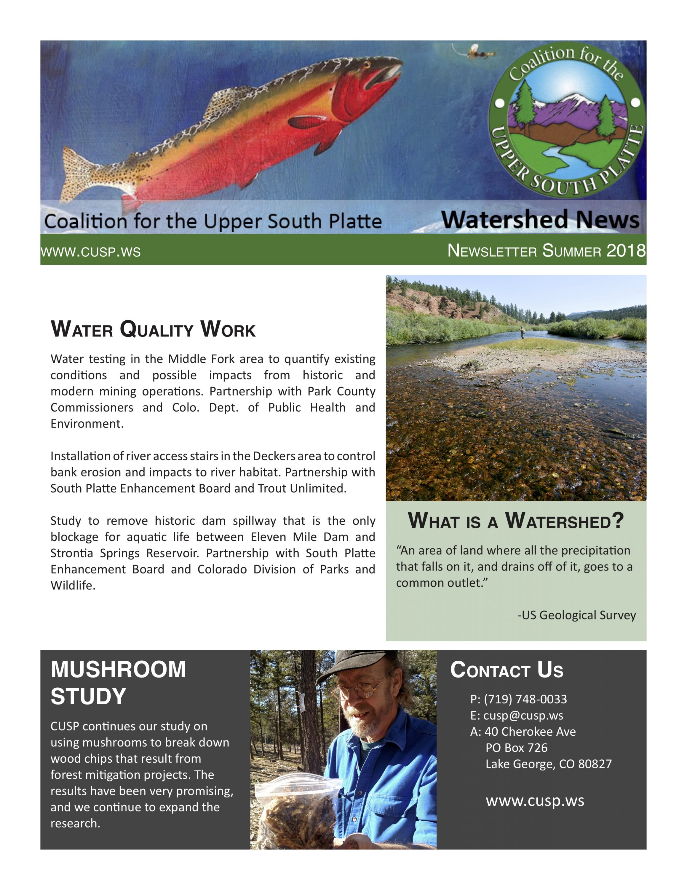 Newsletter front page- Summer 2018